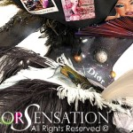 10_WBF 2011 'Haute Couture'